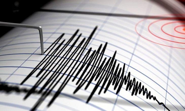 Fuerte sismo de magnitud 6,6 se percibió en nueve regiones del país