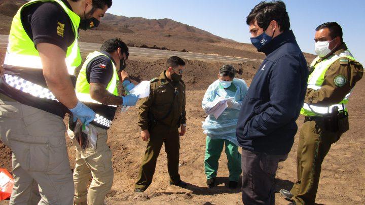 Fiscalía ordena diligencias investigativas luego de hallazgo de cadáver en la ruta 5 Norte
